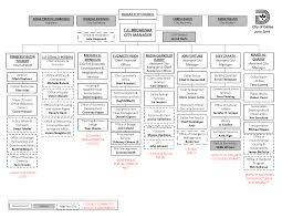 Cmo Org Chart Organizational Chart