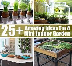 indoor gardening ideas. Indoor Vegetable Garden Ideas Astonishing Apartment Gardening In