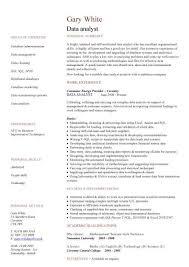 skill resume data analyst cv sample experience of data analysis and data migration cv writing skill resume entry level entry level business analyst resume