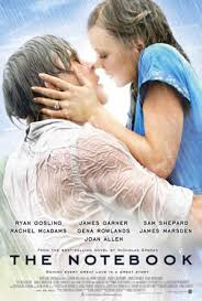 home the international investor movie review essay on the notebook