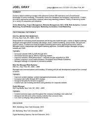 Marketing Manager Resume Interesting Digital Marketing Resume Resume Badak