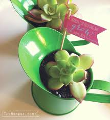 diy succulent watering can gift themombot com