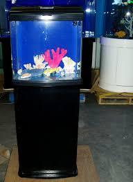 fish tank stand design ideas office aquarium. Recent Posts Fish Tank Stand Design Ideas Office Aquarium Q