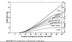 Pregnancy Weight Gain Week By Week Chart Weight Gain In The Second Trimester A Sudden Bump Up Is