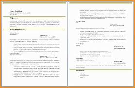 Sample Qa Analyst Resume Extraordinary 4848 Web Based Application Testing Resume Lawrencesmeats
