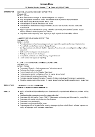 Data Reporting Resume Samples Velvet Jobs