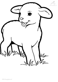 Small Picture Sheep Coloring Page Printable RedCabWorcester RedCabWorcester