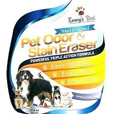 best odor remover simple green pet eliminator stain and review dog