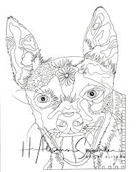 Chihuahua Saint Bernard Mix Wiring Diagram Database