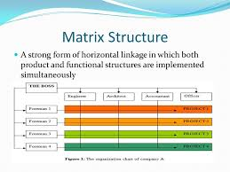 Chapter 3 Fundamentals Of Organizational Structure Ppt
