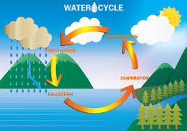 water cycle free vector art     free downloads     water cycle diagram vector