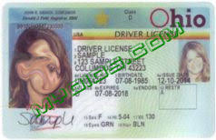 Drivers Ohio Number License Generator