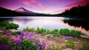 Wallpapers HD Nature Widescreen ...