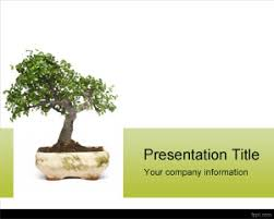 tree in powerpoint download free tree ppt template with bonsai powerpoint template