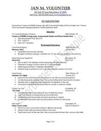 1 Or 2 Page Resume 10 Key Free Resume Templates