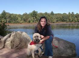 about us soft coated wheaten terrier
