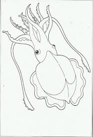 Bộ sưu tập tranh tô màu con mực dành cho bé tô màu - Zicxa books