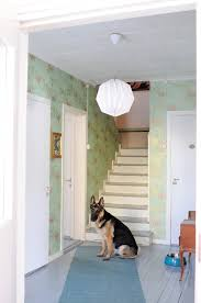 finland turquoise foo dogs with contemporary wallpaper entry eclectic and gray floor german shepard