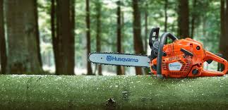 best chainsaw. best chainsaws chainsaw