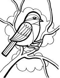 Sparrow Bird Sparrow Bird Coloring Page