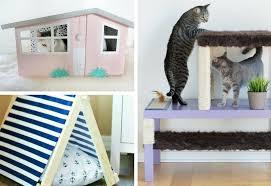diy cat furniture to make at home
