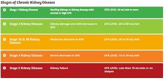 Gfr Kidney Function Chart Protect Your Kidneys Dr Cheryl Kasdorf Nd