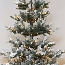 The Lake Shore Blue Spruce  Timeless HolidaysBlue Spruce Pre Lit Christmas Tree