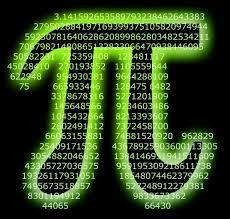 File:Pi mate.jpg - Wikimedia Commons