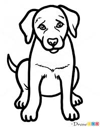 Small Picture How to Draw Puppy Labrador Retriever Dogs and Puppies