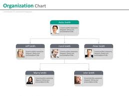 Company Employees Organizational Chart With Profiles