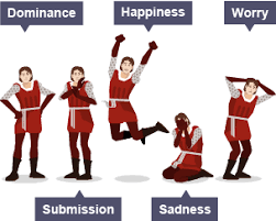 Body Language Meanings 5 Different Types Of Body Language Dominance Submission Happiness