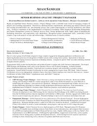sample resume for business analyst example of business analyst business analyst resume sample simple