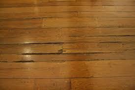 moisture damage to wood floors