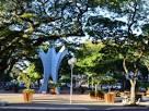 imagem de Cianorte Paraná n-16