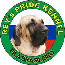 "<b>Фила</b> бразилейро, питомник ""Rey's Pride"", щенки"