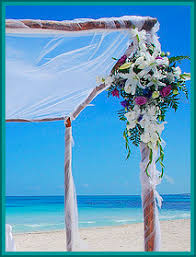 flowers for a beach wedding. beach theme wedding bouquets and flowers for a u