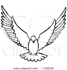 dove flying clipart. Delighful Dove Doves Flying Drawing Dove Royalty Free On Clipart O