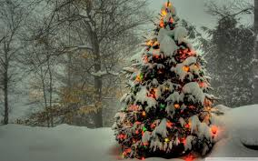 Christmas Tree Wallpapers Free Wallpaper Cave