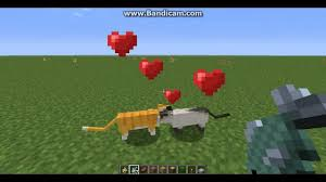 tame baby ocelot minecraft. Delighful Tame In Tame Baby Ocelot Minecraft