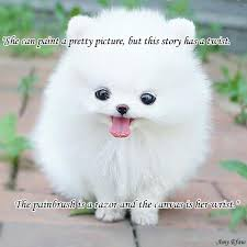 cute animals quotes. Exellent Cute Load 3 More ImagesGrid View To Cute Animals Quotes