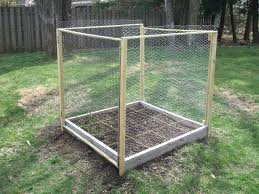 squirrel proof garden combating the competition dealing with