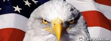 american flag bald eagle facebook cover facebook timeline cover