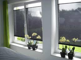 Plissee Rollo Bei Plisseede Der Perfekte Sichtschutz Für Fenster