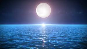 seascape in the moonlight background animation of loopable night ocean landscape with beautiful moonlight water waves texture and starry sky stock