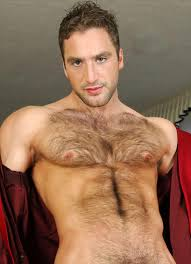 Sexy gay hairy man