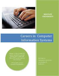 A Career Description A Computer Systems Analyst Term Paper Service ...