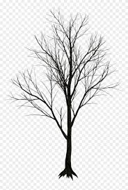 Dry Tree Png Real Leafless Tree Png Transparent Png 1024x1341