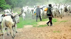 Image result for BREAKING] Fulani herdsmen set Falae's five-hectare oil palm plantation ablaze