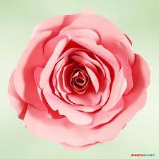 diy giant paper flower the spellbound rose complete tutorial free pattern paperflower
