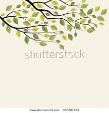 tree branch with leaves vector. tree branch with green leaves. vector illustration on white background. leaves